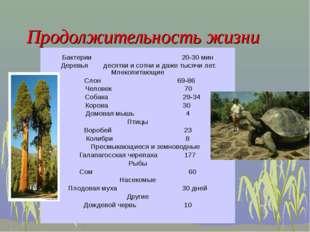 Бактерии 20-30 мин Деревья десятки и сотни и даже тысячи лет. Млекопитающие С