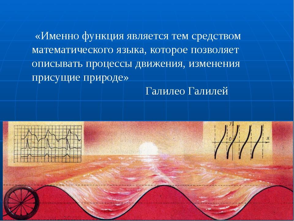 «Именно функция является тем средством математического языка, которое позвол...