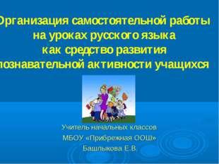 Учитель начальных классов МБОУ «Прибрежная ООШ» Башлыкова Е.В. Организация са