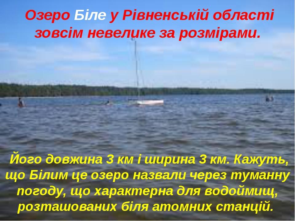 Озеро Біле у Рівненській області зовсім невелике за розмірами. Його довжина...