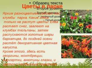 Ярким разноцветьем радуют нас клумбы парка. Какие здесь только не растут цвет