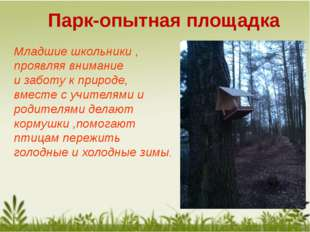Парк-опытная площадка Младшие школьники , проявляя внимание и заботу к природ
