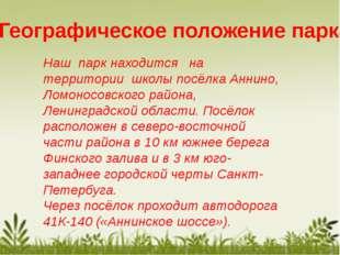 Географическое положение парка Наш парк находится на территории школы посёлка