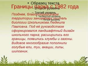 Позднее, благоустройством территории занималась учитель биологии Школьникова