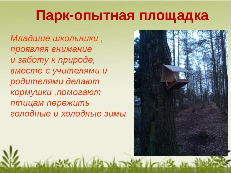 Парк-опытная площадка Младшие школьники , проявляя внимание и заботу к природ...