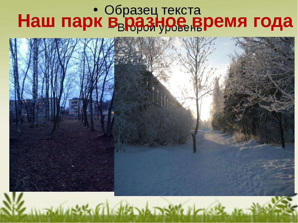 Наш парк в разное время года