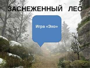 ЗАСНЕЖЕННЫЙ ЛЕС Игра «Эхо»