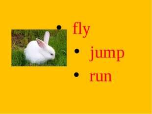 fly jump run