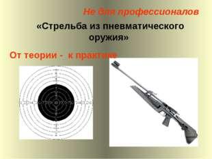 «Стрельба из пневматического оружия» От теории - к практике Не для профессион