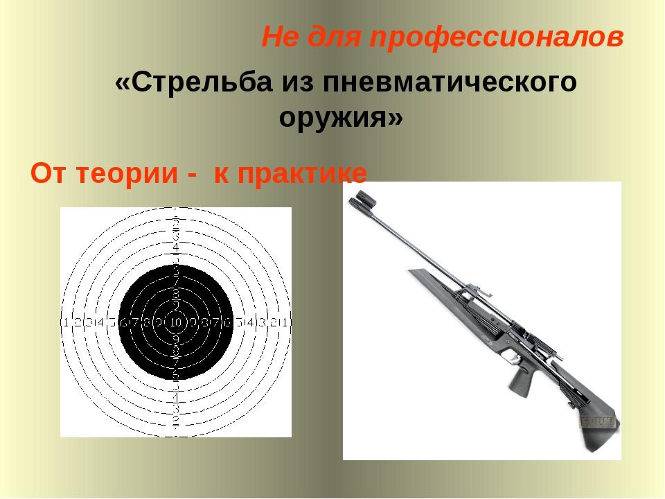 «Стрельба из пневматического оружия» От теории - к практике Не для профессион...