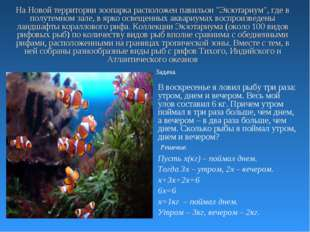 """На Новой территории зоопарка расположен павильон """"Экзотариум"""", где в полутемн"""