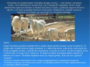 Издалека на территории зоопарка видны скалы – там живут снежные козы. Это оби