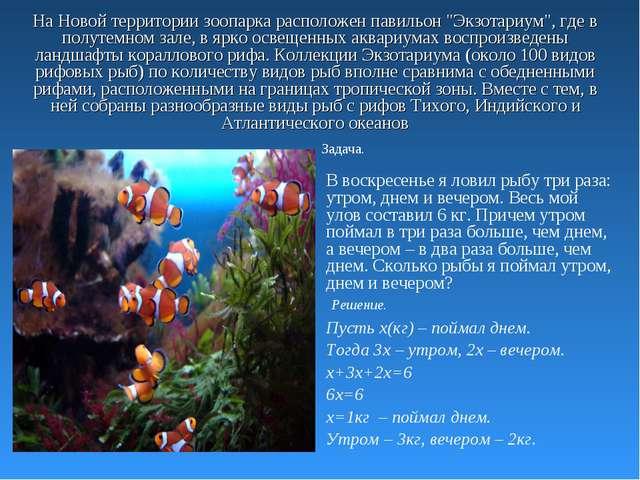 """На Новой территории зоопарка расположен павильон """"Экзотариум"""", где в полутемн..."""