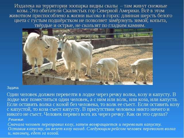Издалека на территории зоопарка видны скалы – там живут снежные козы. Это оби...