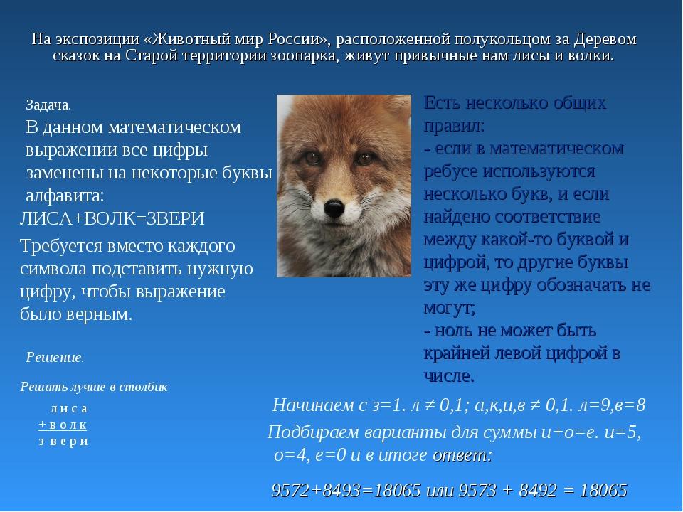 На экспозиции «Животный мир России», расположенной полукольцом за Деревом ска...