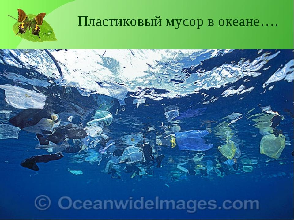 Пластиковый мусор в океане….
