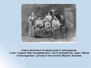 Семья Цветаевых во дворе дома в Трехпрудном. Стоят: Андрей, Иван Владимирович