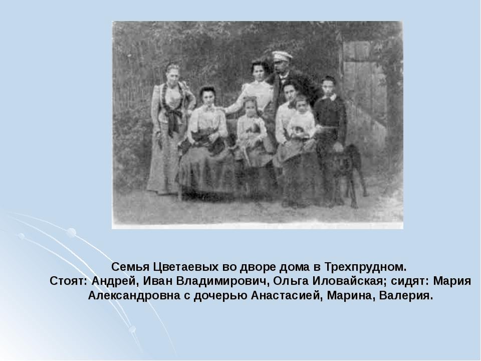 Семья Цветаевых во дворе дома в Трехпрудном. Стоят: Андрей, Иван Владимирович...