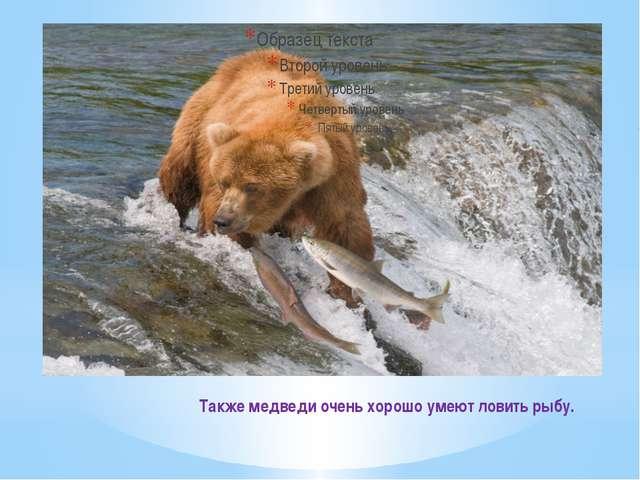 Также медведи очень хорошо умеют ловить рыбу.