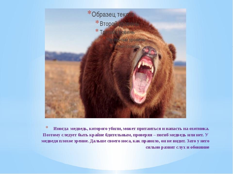 Иногда медведь, которого убили, может притаиться и напасть на охотника. Поэто...