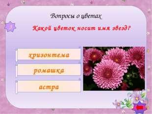 Какой цветок символизирует гордость? РОЗА ТЮЛЬПАН СТОЛЕТНИК 6 Вопросы о цве