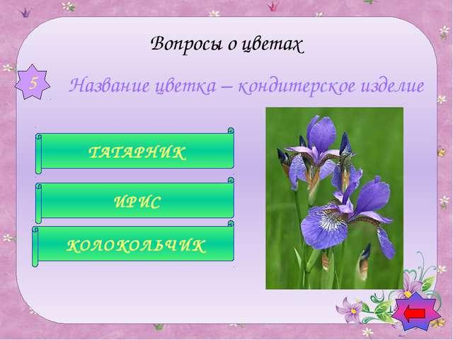 В народе этот цветок зовут полевыми слезками, искорками, звездочками, зорьк...