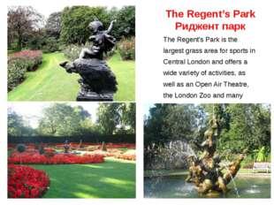 The Regent's Park Риджент парк The Regent's Park is the largest grass area fo