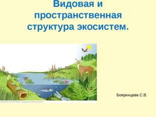 Видовая и пространственная структура экосистем. Бояринцева С.В.