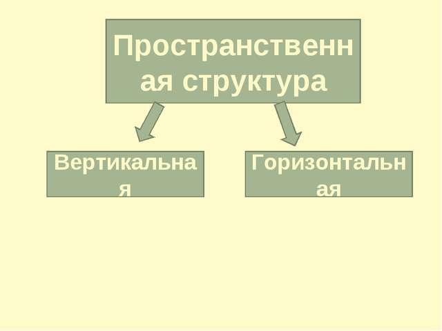 Пространственная структура Вертикальная Горизонтальная