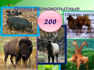 200 Отряд парнокопытные