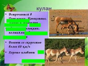 Встречается в Туркмении, Казахстане, Китае и Монголии Питается злаками, полын