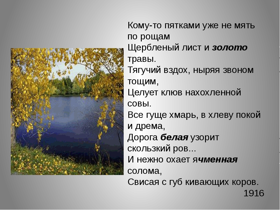 Кому-то пятками уже не мять по рощам Щербленый лист и золото травы. Тягучий в...