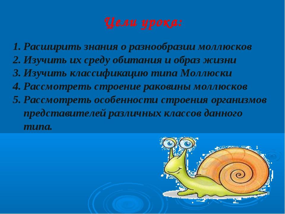 Цели урока: Расширить знания о разнообразии моллюсков Изучить их среду обитан...
