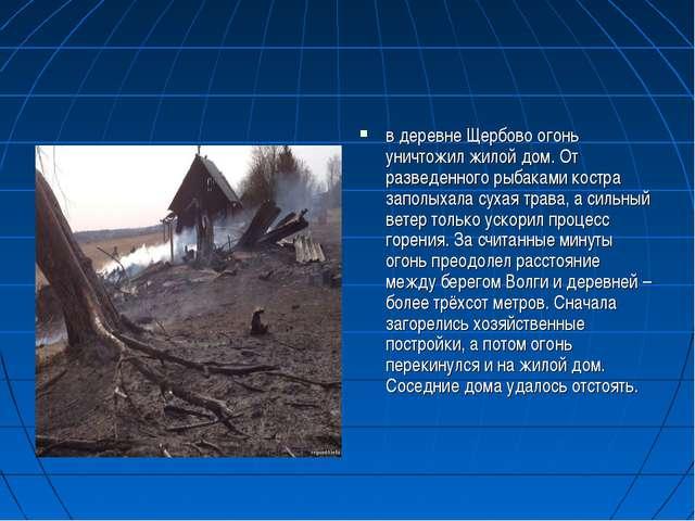 в деревне Щербово огонь уничтожил жилой дом. От разведенного рыбаками костра...