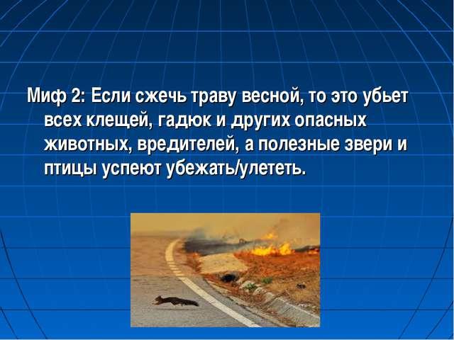 Миф 2: Если сжечь траву весной, то это убьет всех клещей, гадюк и других опас...