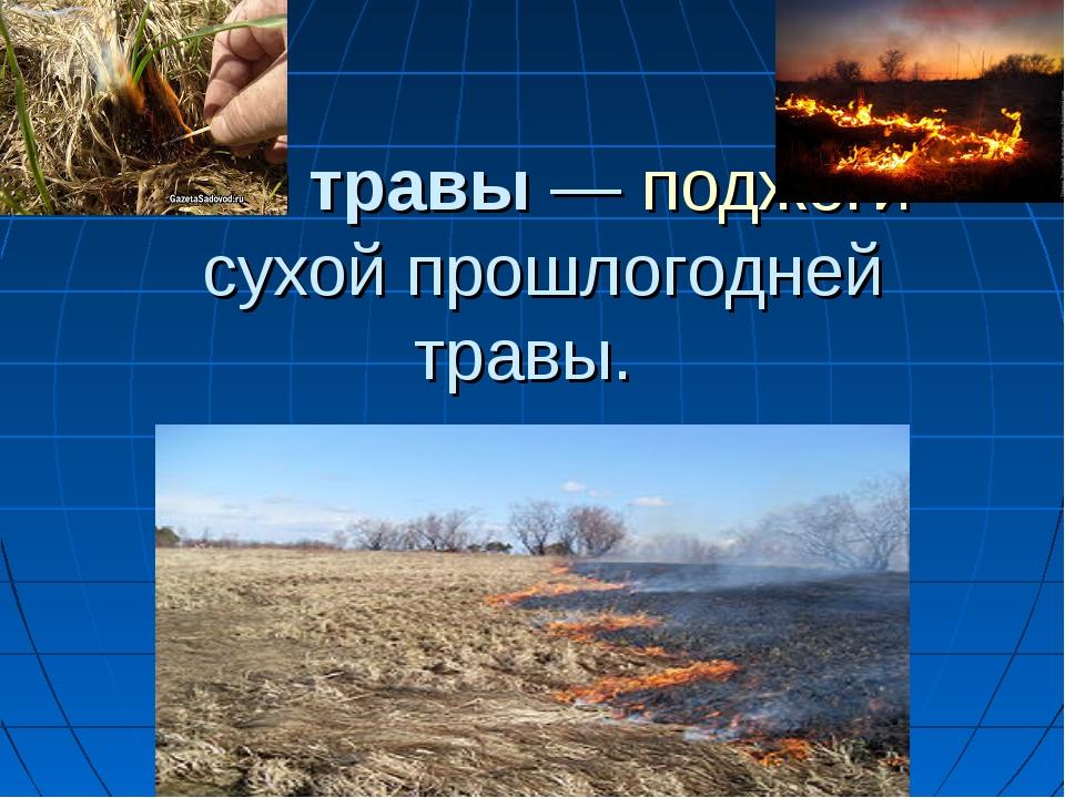Пал травы—поджогисухой прошлогодней травы.