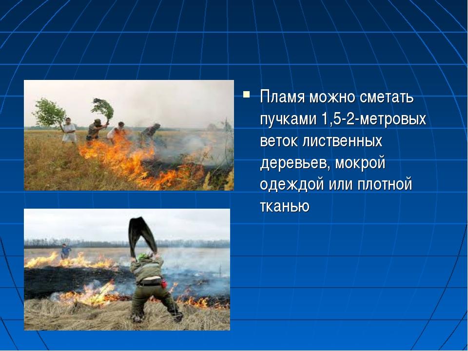 Пламя можно сметать пучками 1,5-2-метровых веток лиственных деревьев, мокрой...