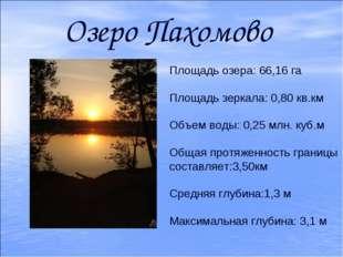 Озеро Пахомово Площадь озера: 66,16 га Площадь зеркала: 0,80 кв.км Объем воды