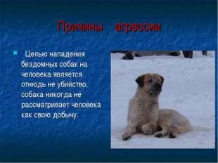 Целью нападения бездомных собак на человека является отнюдь не убийство, соб