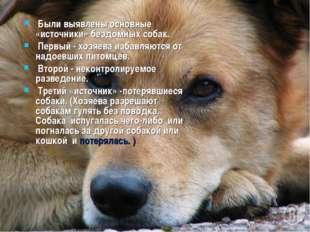 Были выявлены основные «источники» бездомных собак. Первый - хозяева избавля