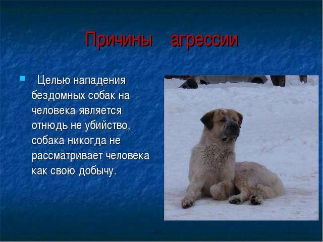 Целью нападения бездомных собак на человека является отнюдь не убийство, соб...