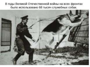 В годы Великой Отечественной войны на всех фронтах было использовано 68 тысяч