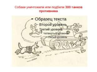 Собаки уничтожили или подбили 300 танков противника