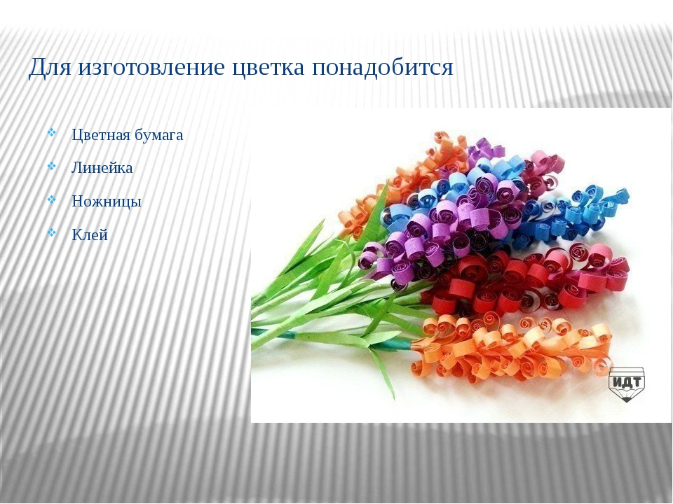 Для изготовление цветка понадобится Цветная бумага Линейка Ножницы Клей