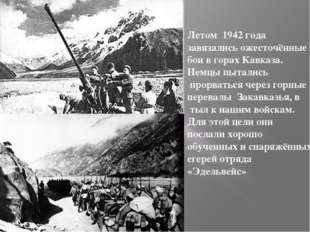 Летом 1942 года завязались ожесточённые бои в горах Кавказа. Немцы пытались п