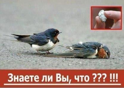 hello_html_470830e1.jpg