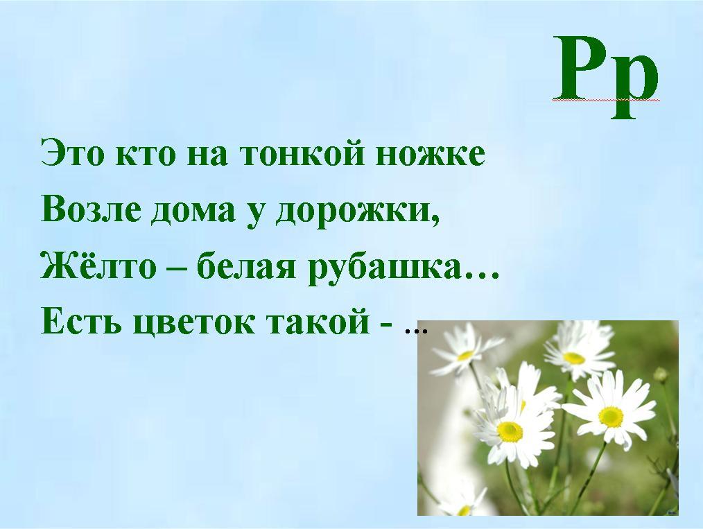hello_html_m25a06555.jpg