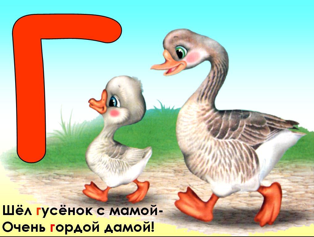 hello_html_m5ac468e4.jpg