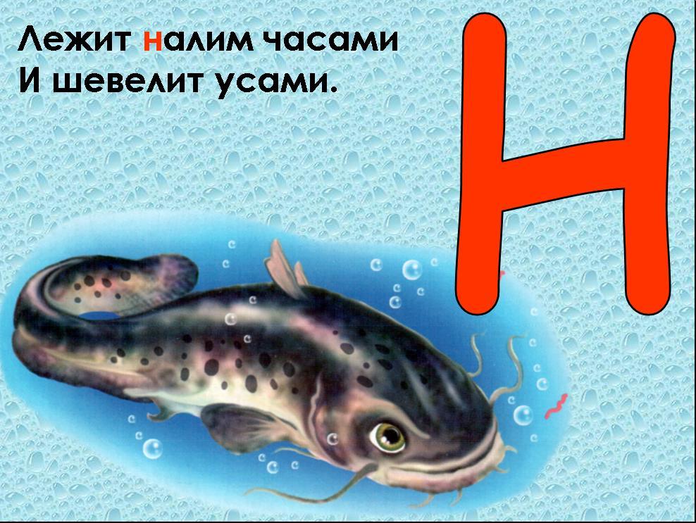 hello_html_m7a8a9917.jpg