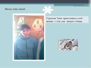 Горохова Таня приготовила сооб- щение о том, как зимуют птицы. Жизнь птиц зим